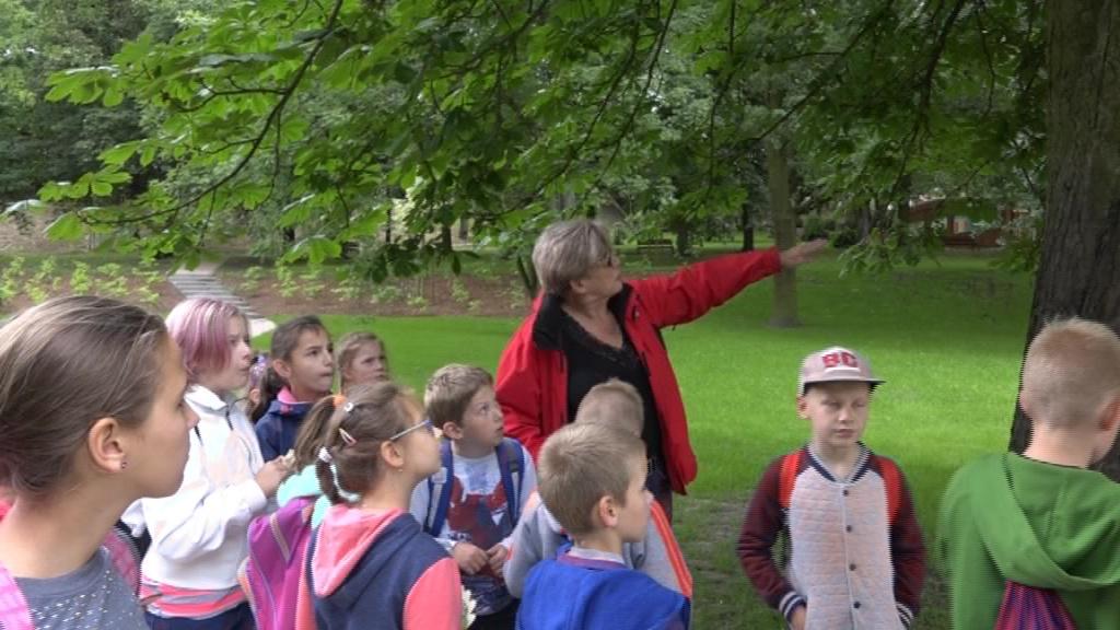 """Zajęcia edukacyjne """"na pompce"""" w parku Sienkiewicza"""