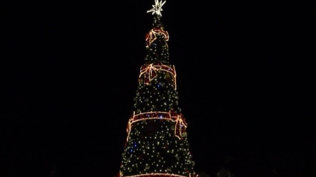 Kilkunastometrowa choinka i iluminacje świąteczne na Placu Wolności