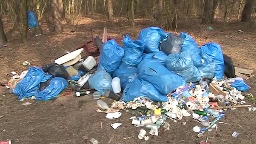 Śmieci są wszędzie! Jak radzą sobie gminy?