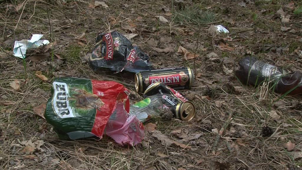 Lasy toną w śmieciach