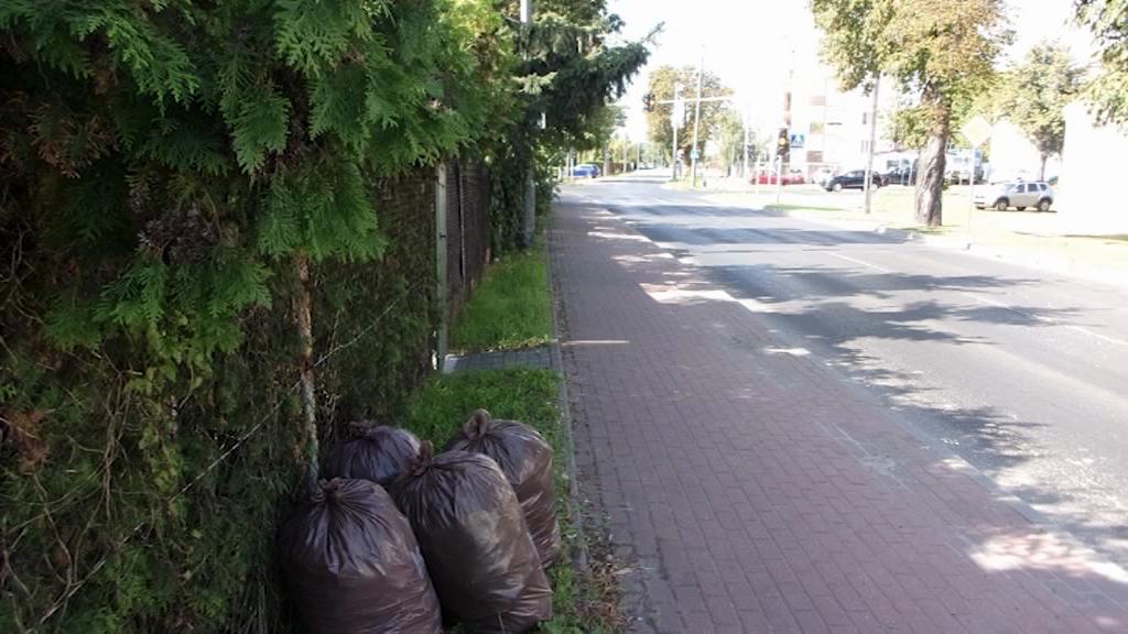 Worki śmieci przy ogródkach działkowych, rondach i pasach zieleni…