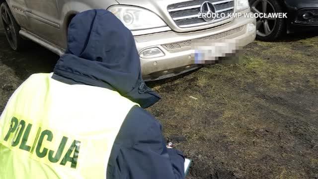 Znaleźli dziuplę z kradzionymi samochodami z Niemiec