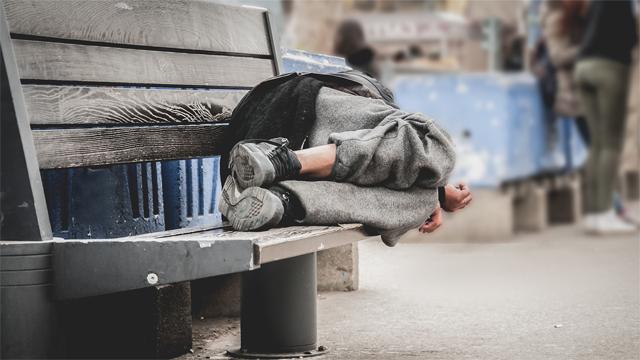 Schroniska dla bezdomnych oblężone!